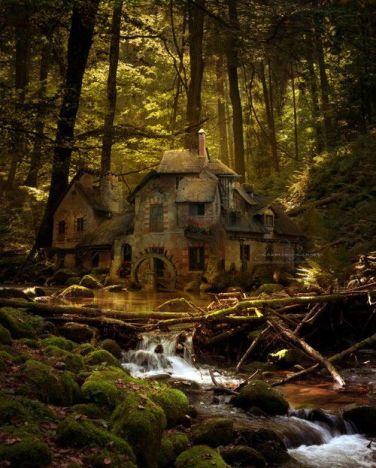 Bear's house 3